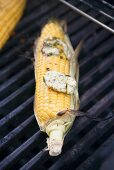 Corn on the cob with garlic butter on barbecue grill rack