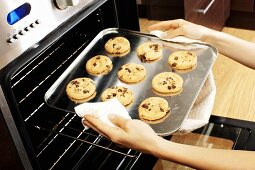 Taking chocolate chip cookies out of the oven