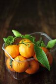 Mandarin oranges with leaves in a plastic punnet