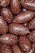 Whole pecan nuts, macro zoom