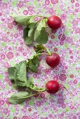 Three radishes on a floral patterned surface