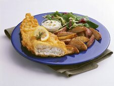 Deep Fried Fish and Chips with Tartar Sauce and Salad
