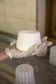 Hand Holding Formed Halloumi Cheese; Cyprus