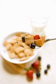 Spoonful of Chex Cereal with Fruit; Bowl of Cereal