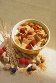 Bowl of Cereal with Raspberries