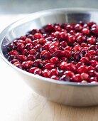 Cranberries in bowl of water