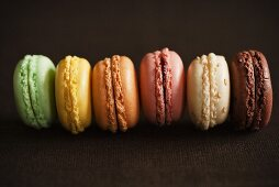 A Row of Assorted Colored Macaroon Cookies