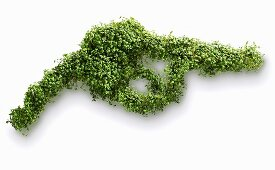 A petrol pump nozzle shaped out of cress