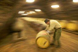 Man rolling wine barrel, Kiralyudvar Winery, Tarcal, Hungary
