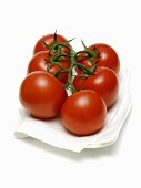 Vine Ripened Tomatoes on Paper Towel
