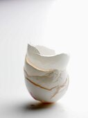 A stack of egg shells