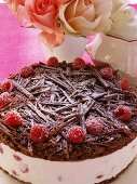 Chocolate raspberry gateau with icing sugar; roses