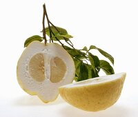 Lemon halves with twig and leaves