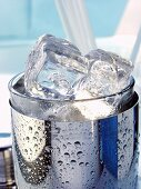 Ice cubes in cocktail shaker (detail)