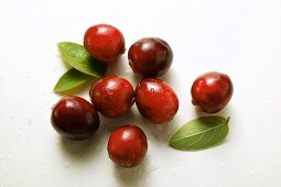 Cranberries with drops of water and leaves