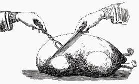 Carving a roast goose (Illustration)