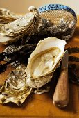 Fresh oysters, oyster glove and oyster knife