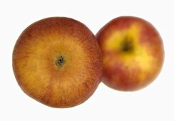 Two 'Pink Lady' apples