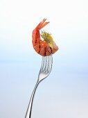 Grilled prawn on a fork