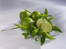 Limes and assorted herbs on a plate