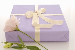 Gift in purple wrapping paper and white rose