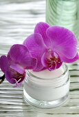 Orchid flowers and jar of cream