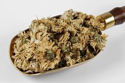 Dried chrysanthemum flowers in a scoop