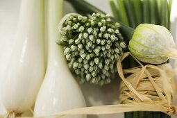 Spring onions, garlic chives and chives