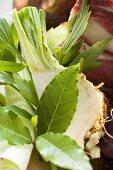Soup vegetables (celeriac, leek, bay leaves etc.) and beef