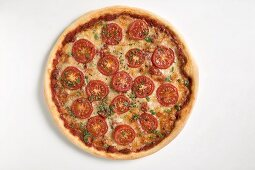 Cheese and tomato pizza with fresh oregano