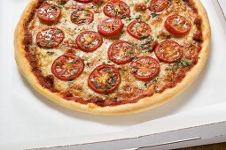 Cheese and tomato pizza with oregano in pizza box