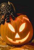 Hand in cobweb glove holding pumpkin lantern