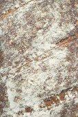 Rustic bread (detail)