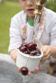 Child washing cherries under tap