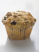 Blueberry muffin in paper case