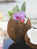 Opened coconut with orchid, sea in background