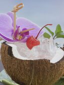 Half a coconut with ice cubes, cocktail cherry and orchid