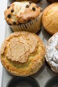 Assorted muffins in muffin tin (overhead view)