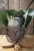 Red cabbage in basket on chopping board in front of wooden wall