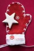 Cinnamon star on festive mitten