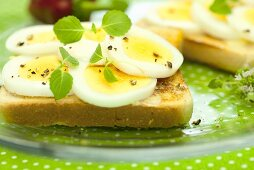 Toast with egg and mint