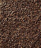 Coffee beans (full-frame)