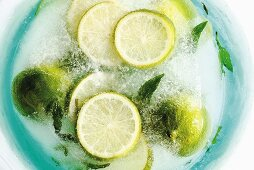 Limes and mint leaves in block of ice (overhead view)