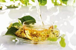 Pouring lime blossom tea into glass cup
