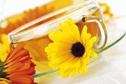 Marigold tea in glass cup, marigolds