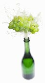 Sparkling wine splashing out of bottle