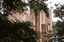 Stone wall castle with trees in front, Bodiam Castle