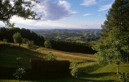 View of hills with lush in Styria, Austria