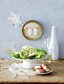 Salad with fennel, spinach and goat's cheese