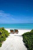 Two lounge chair on beach in island Dhigufinolhu resort, Maldives